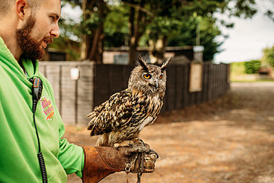 man holding an owl on his arm at Avon Valley wildlife park
