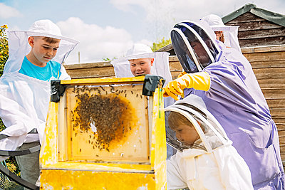 family of beekeepers holding a frame of honey and bees