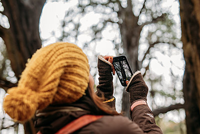 person taking a photo of trees in the woods