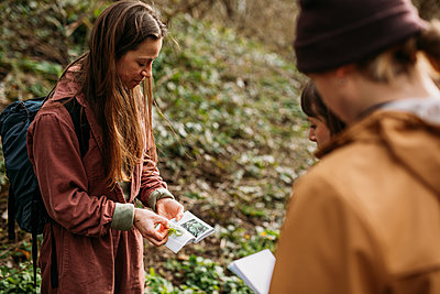 guide showing a group wild herbs and a book for reference in woodland