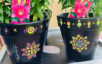 Neon plant pots decorated with Alexandria's signature mandalas