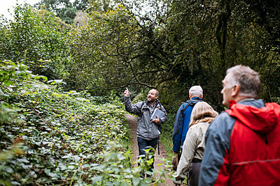 Ed Drewitt points, drawing his guests' attention to the canopy, as they walk through the Forest of Dean