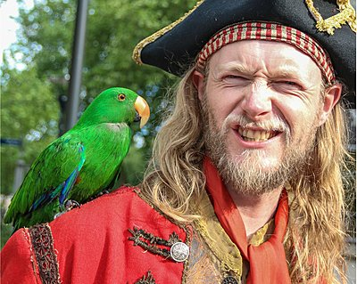 Actor dressed as a pirate wearing a hat, with a parrot on his shoulder scowls at the camera