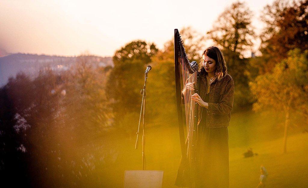 Live harp serenade