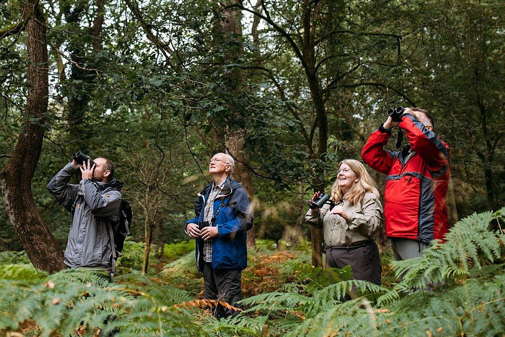 Forest of Dean wildlife safari for animal lovers conservation Bristol